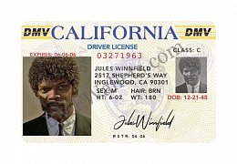 Bad Mother Fucker Driver\'s license Jules Winnfield